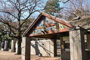井の頭自然文化園にはリスやモルモットなど小動物がいっぱい!