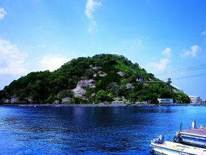 無人島がまるごと水族館!あわしまマリンパークの見所を紹介