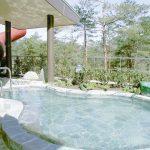 グリーンパーク想い出の森でアウトドアと温泉を楽しもう!