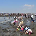 GWは後半に!千葉県の潮干狩りスポット2019(富津・木更津・船橋・市川)