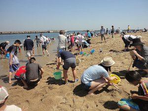入場無料やマテ貝も人気!三重・大阪・兵庫の潮干狩りスポット