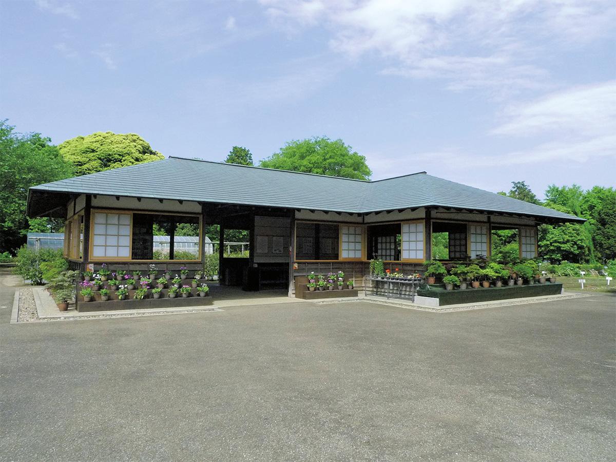 併設の「くらしの植物苑」/国立歴史民俗博物館(千葉県/佐倉市)