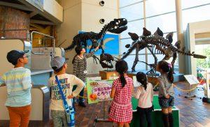 恐竜の森を探検!全身骨格で学ぶ!愛知・岐阜・三重の恐竜スポット11選