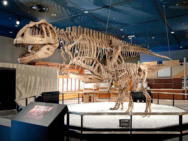 マプサウルスの全身骨格標本/名古屋市科学館(愛知県/名古屋市)