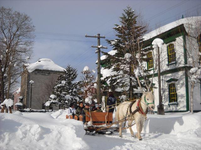 冬の雪道を走る馬そり/北海道開拓の村(北海道札幌市)