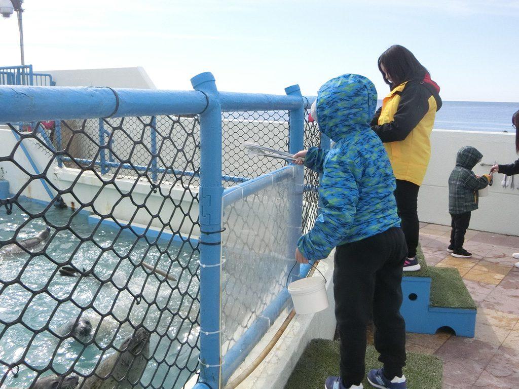 トングを使ってアザラシにエサやり体験/ノシャップ寒流水族館(北海道/稚内市)