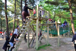 茨城県のアスレチック12選!ターザンロープで遊べる公園も多数